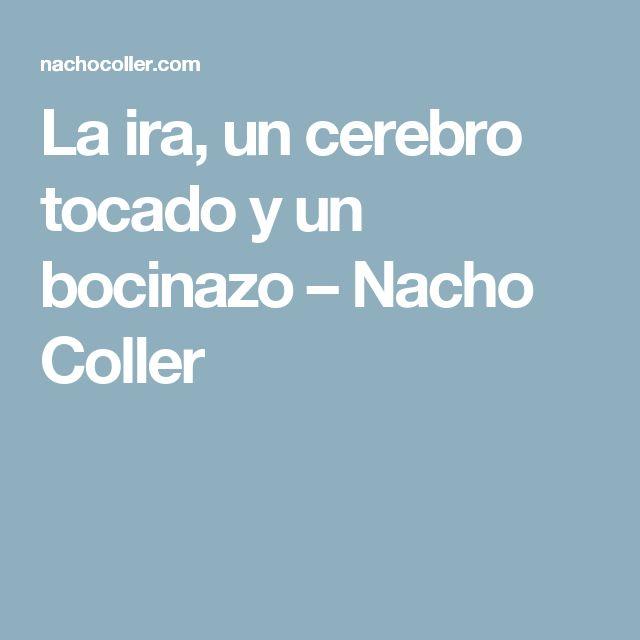 La ira, un cerebro tocado y un bocinazo – Nacho Coller