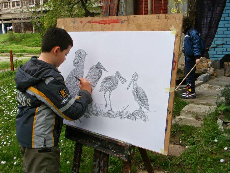 ALLPE Medio Ambiente Blog Medioambiente.org : Los perfeccionistas dibujos naturales de Dušan Krtolica, un niño de 11 años