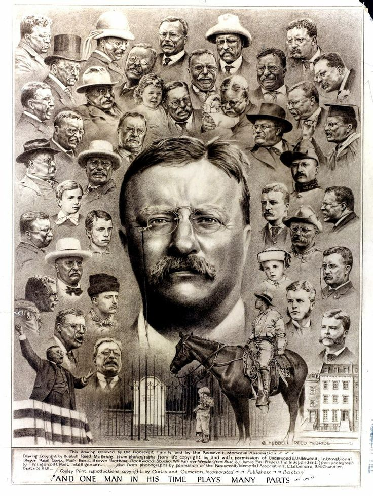 theodore roosevelt and franklin roosevelt Franklin d roosevelt:  it was during his harvard years that he fell under the spell of his fifth cousin, president theodore roosevelt,.