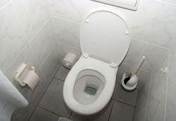 Die Toiletten zu putzen gehört zu den wohl unbeliebtesten Arbeiten jeder Hausfrau. Es gibt zahlreiche teure Mittel, die alle versprechen, dass man mit nur geringem Aufwand jede Toilette wieder zum Strahlen bringt. Der Haken dabei ist aber in den meisten Fällen, dass doch noch kräftig geschrubbt werden muss. Wer sich diese lästige und auch sehr unangenehme Arbeit ersparen will, der nimmt ein Mi ...