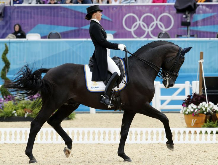"Led by the Olympic record-breaking performance of 27-year-old Charlotte Dujardin, Team GB won its first ever gold medal in Olympic dressage. ""I wanted the gold medal so badly and I didn't want to mess it up. It is so surreal,"" she said after winning the gold on Valegro.    ""I'm just so lucky to be riding Valegro. He is the horse of a lifetime - he finds it so easy,"" she said."