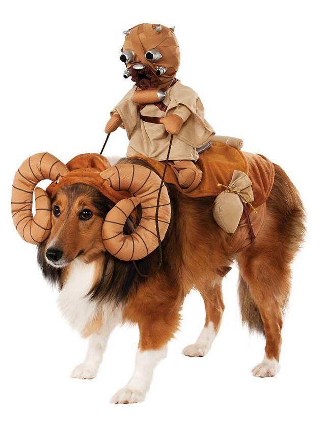 Bantha mit Tusken-Räuber Star Wars Hundekostüm