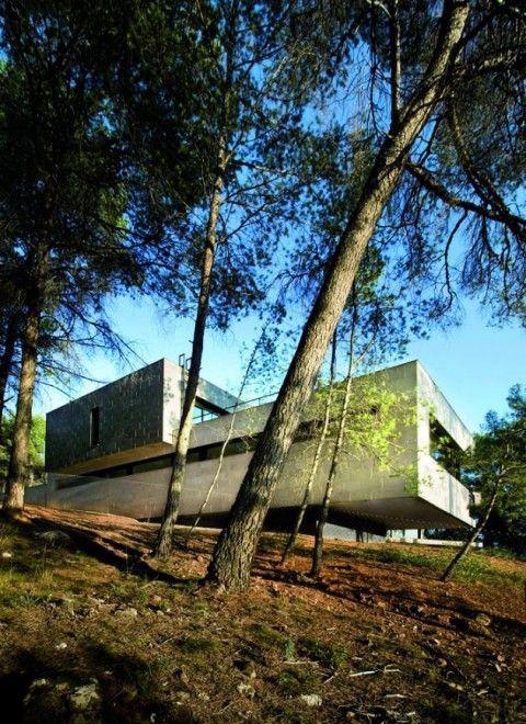 Fachada Moderna en el Bosque