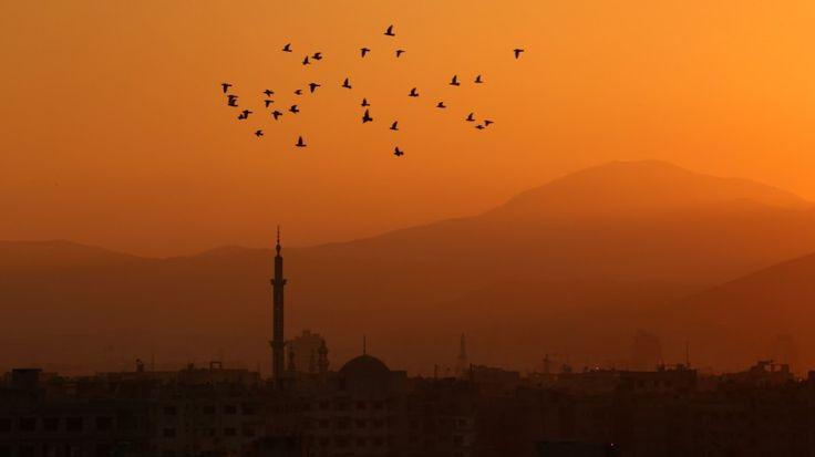 》Syrien: Stadt Irbin bei Damaskus (Publiziert 03/2017).《