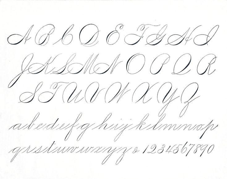 Best spencerian script images on pinterest hand type