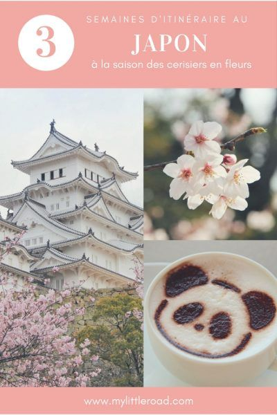 Article pratique sur mon itinéraire au Japon pendant 3 semaines à la saison des cerisiers en fleurs : conseil hébergement, budget et liste d'activités à ne pas manquer !