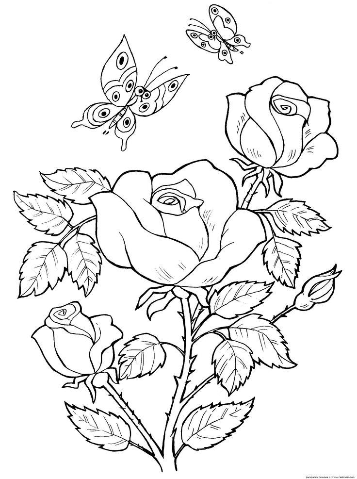 """Coloring Rose """"Färgläggning för barn. Skriv ut gratis barnens färg. Färgläggning djur, Barbie, Winx feer, bilar, prinsessor, blommor, fåglar"""