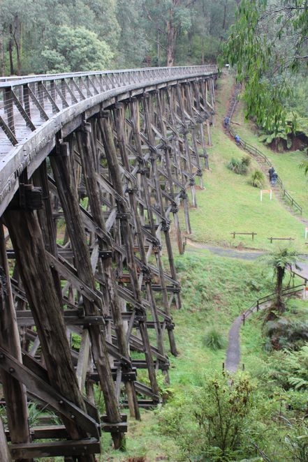 Visit Noojee Trestle Bridge, the tallest surviving bridge in Victoria and walk the 6 km return rail trail through forest and ferns.