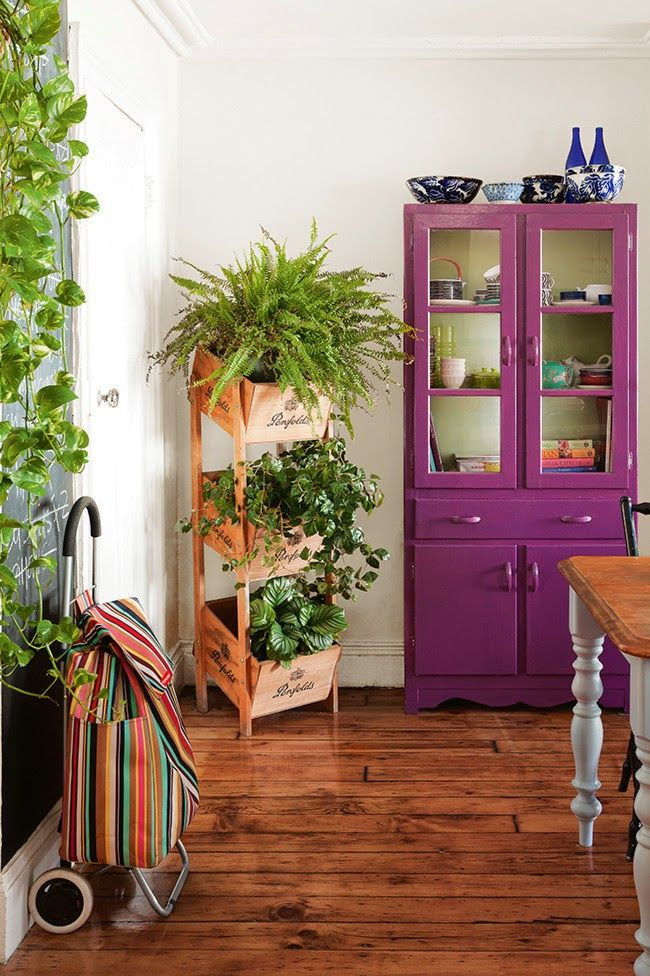 10 maneiras incríveis de usar plantas de interior