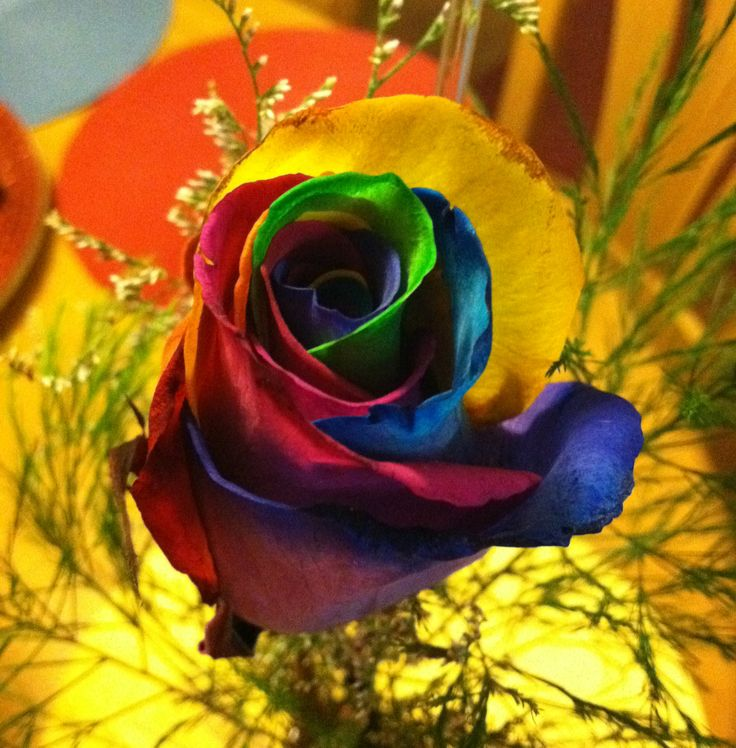 17 best images about decorative tie dye flowers on for Rainbow dyed roses