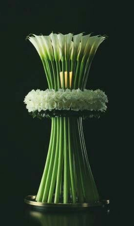 Stunning floral display