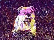 "New artwork for sale! - "" Bulldog English Bulldog Dog  by PixBreak Art "" - http://ift.tt/2gTYWQ4"