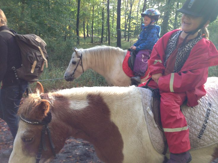Ponyridning i Dyrehaven. Lej en Pony på Fortunens Rideskole.