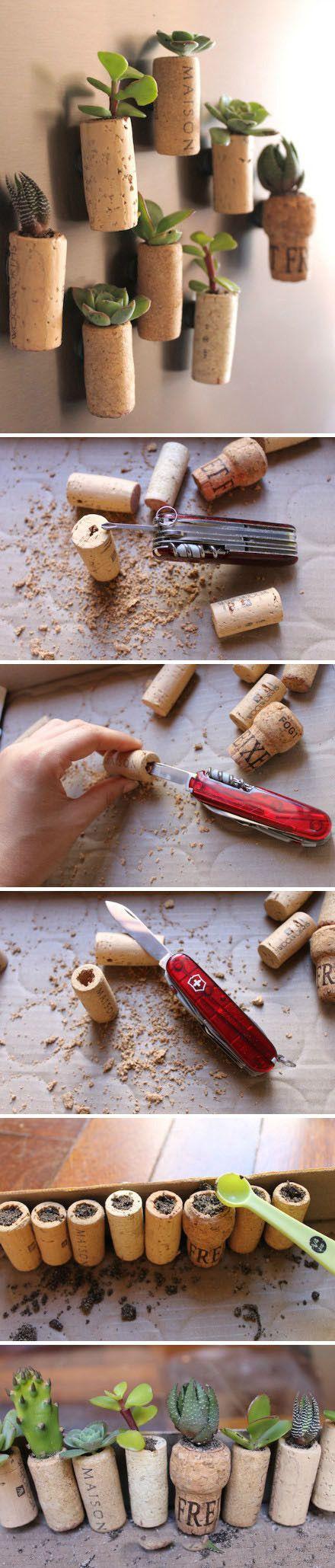 Des bouchons en lièges pour vos plantes miniatures  Pinterest : bimmynager