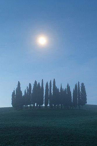 x moon11