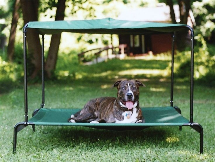 Dog Bed With Canopy Outside Dog Bed Outdoor Dog Bed Elevated Dog Bed