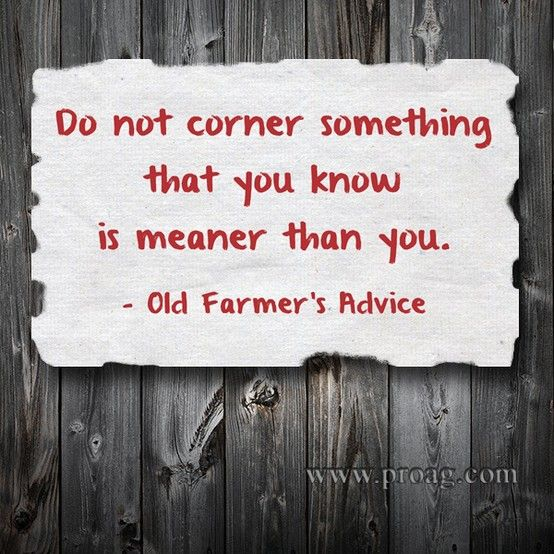 ProAg's resident Old Farmer is at it again. Some good advice for the farm, as well as life. #quote #agriculture More