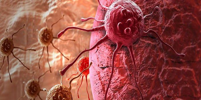 Pin op Cancer / Cáncer / Kanker