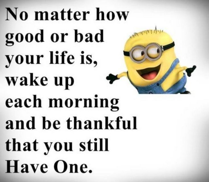 Random Facetious Minions images with quotes (10:20:59 PM, Wednesday 16, December 2015 PST) – 10 pics