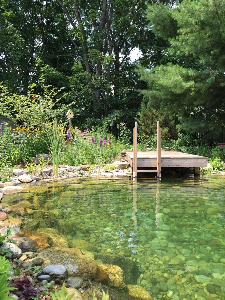 384 best images about natural pools on pinterest swim for Swimming pool filter for koi pond