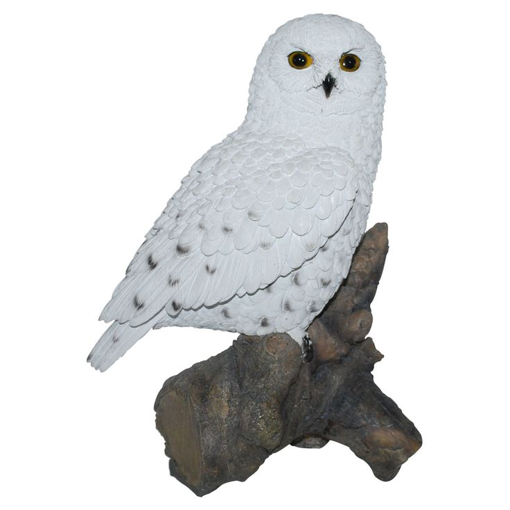Border Concepts Snowy Owl Statue | from hayneedle.com