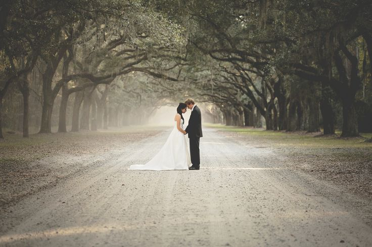 Savannah Southern Wedding Inspiration | Savannah Wedding  Anna Hutchison : photographer