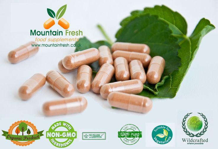 Tulasi 200 X 250mg Organic Ocimum Tenuiflorum Pure Herb Capsules 200 X 250mg: Amazon.fr: Hygiène et Soins du corps