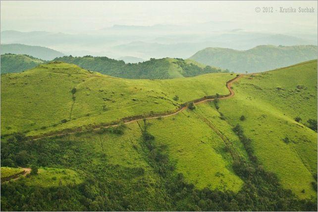 Kodachadri jeep track