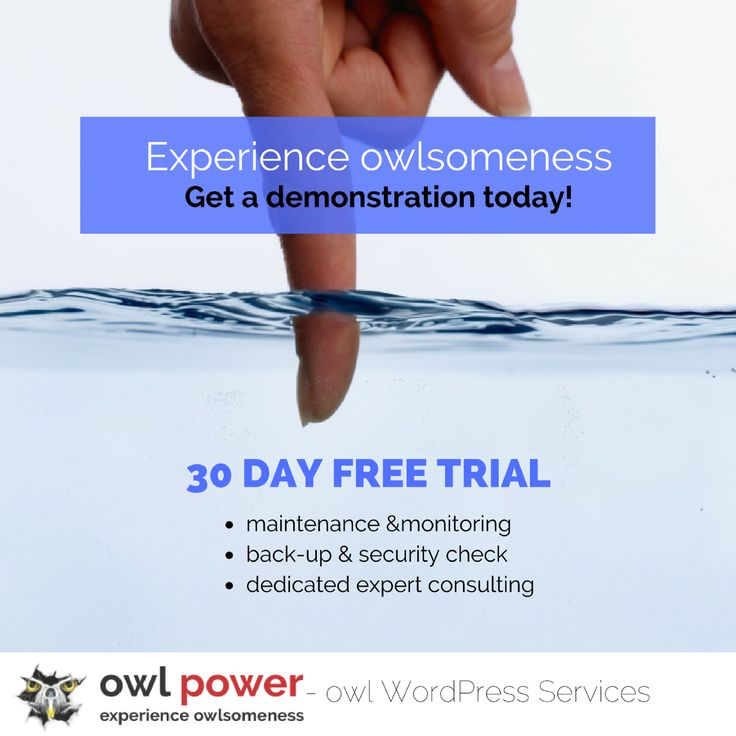 Same special treatment for your WordPress. No matter what tier! Get a 30 day FREE demonstration today! https://owlpower.eu/wp-services/prices/