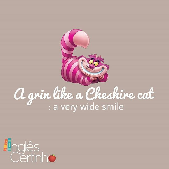 A grin like a Cheshire cat A very wide smile  Usage notes: The Cheshire cat is a character in Lewis Carroll's book Alice in Wonderland and is famous for its big smile.  I just presumed he'd got the job because he walked in here with a grin like a Cheshire cat .... * Um sorriso largo.  Cheshire é o gato da Alice. ... #inglescertinho #inglesnoinstagram #learnenglish #instaenglish #iloveenglish #english #englishteachers #englishstudents #istudyenglish #follow #instagood #aprendaingles #ingles…