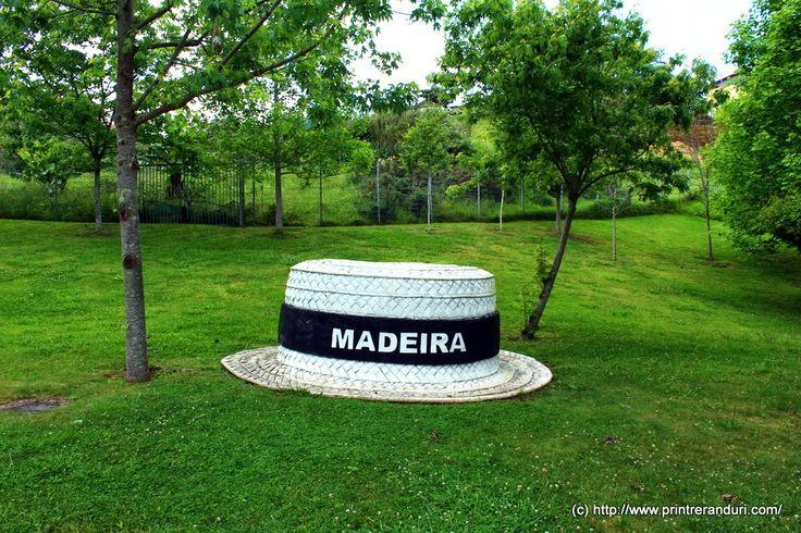 Printre rânduri: Top-fulger - 11 atracții de nota 10 în Madeira