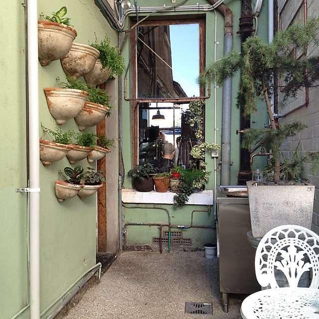 Green Refectory- BRUNSWICK Cheap and delish