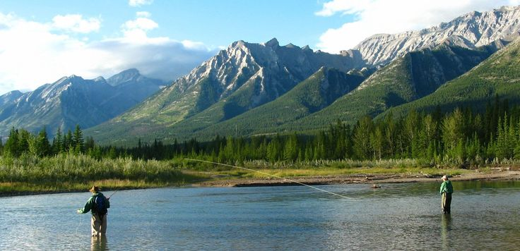 Banff Fly Fishing Guides. Welcome to guided fly fishing trips near Banff Alberta on the Bow River. Hawgwild Flyfishing Guides guide high end walk and wade fly fishing and spin fishing adventures along the mighty Bow River.