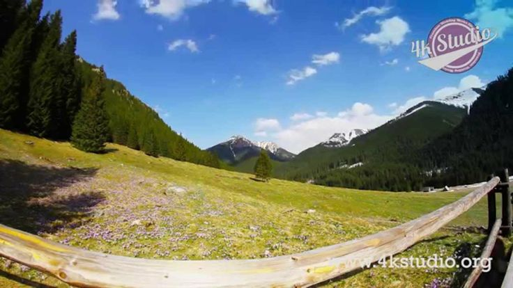 Piękne Polskie Tatry i ten czas w roku gdy doliny pokryte są kwitnącymi krokusami... MAGIA!  www.4kstudio.org