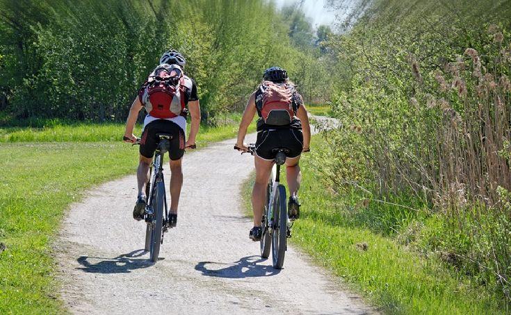 A+burgenlandi+és+a+Fertő-tavat+megkerülő+kerékpárutak+talán+nem+gyilkos+erőpróbára+vannak+kitalálva,+inkább+pihentető+családi+programokra.+A+két+és+félezer+kilométernyi+tüköraszfalt+-+leszámítva+persze+a+természetvédelmi+tájon+futó+murvás+utakat+-+attól+válik+igazán+különlegessé,+hogy+számos…