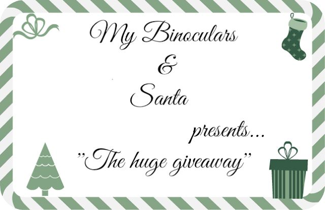 My Binoculars: Huge Santa's Bag Giveaway