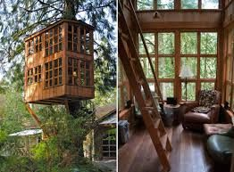 beautiful treehouse masters inside masters inside google search treehouse masters inside - Treehouse Masters Tree Houses Inside