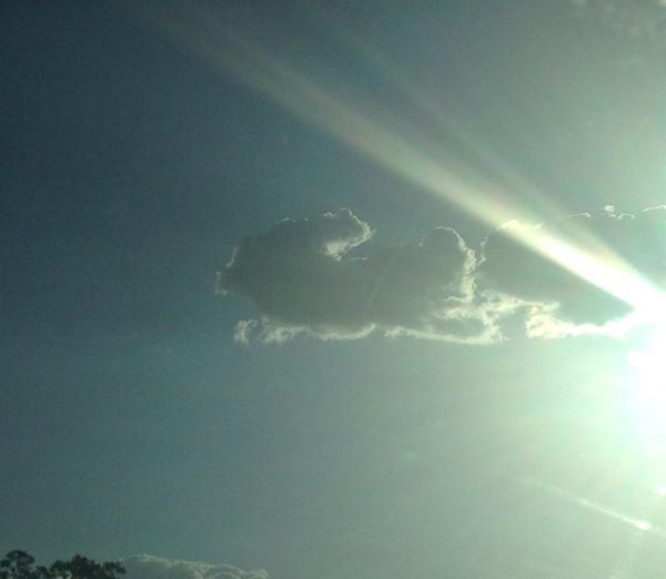 """Easter Bunny Cloud Taken April 20, 2014 -- """"Thanks to 3TV viewer Amy Monchamp for sending in this photo."""""""