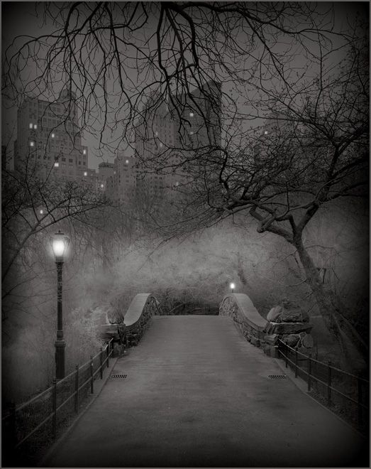 Central ParkCentralpark, New York Cities, Winter Photography, Beautiful, Central Parks, White Christmas, Snowy Stroll, The Bridges, Favorite Placestravel