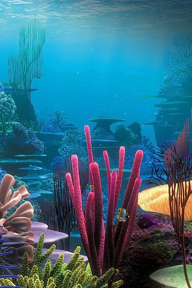 Arrecifes de coral                                                                                                                                                     Más