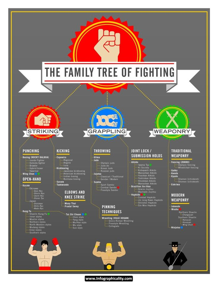 Mixed%20Martial%20Arts%20Tree%20www.infographicality.com Mixed Martial Arts Tree Infographic
