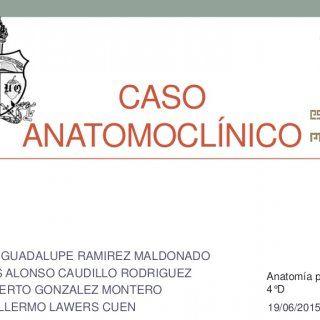 CASO ANATOMOCLÍNICO MA. GUADALUPE RAMIREZ MALDONADO LUIS ALONSO CAUDILLO RODRIGUEZ ALBERTO GONZALEZ MONTERO GUILLERMO LAWERS CUEN Anatomía patológica 4°D 19. http://slidehot.com/resources/caso-clinico-anatomia-patologica-4d.14702/