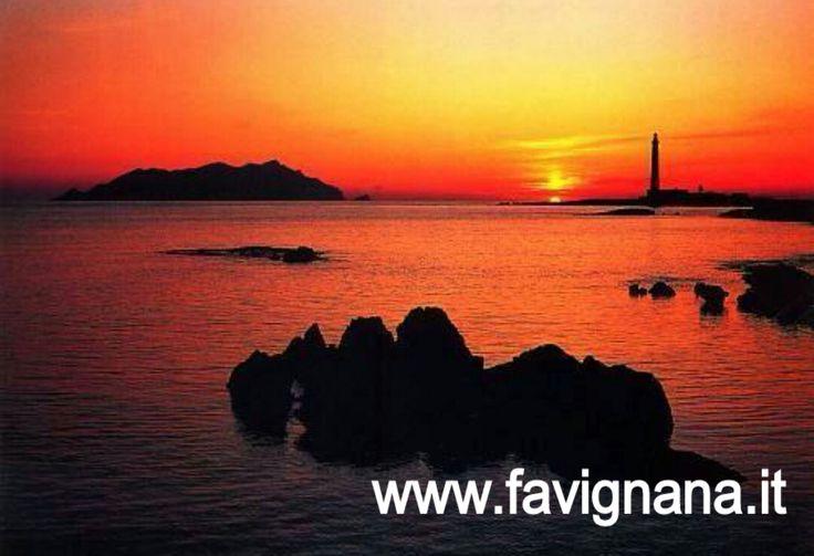 Questa é una delle foto più belle. #favignanait #egadi #trapani #sicilia #italia www.favignana.it