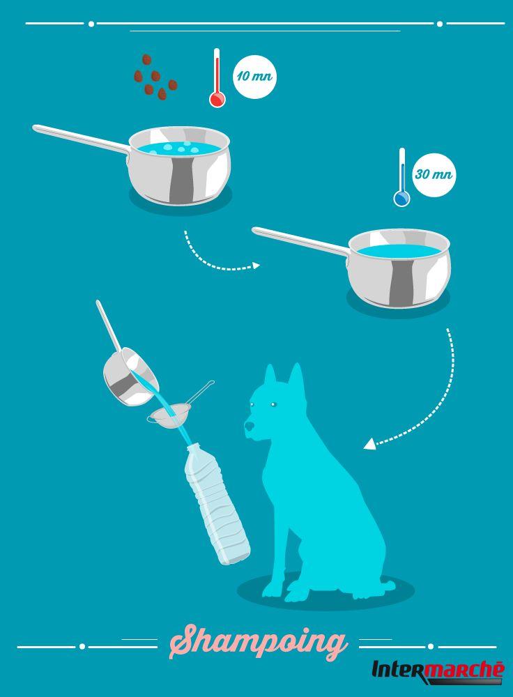 #Astuce : faire un shampoing naturel pour votre chien. 1) Faire bouillir 50 gr de noix de lavage dans 1/2 litre d'eau pendant 10 minutes (doubler les quantités pour les chiens à grosse fourrure). 2) Laisser reposer un peu (30min) . 3) Puis refaire bouillir 10min. 4) Laisser refroidir et filtrer. 5) Verser le liquide obtenu dans une bouteille.