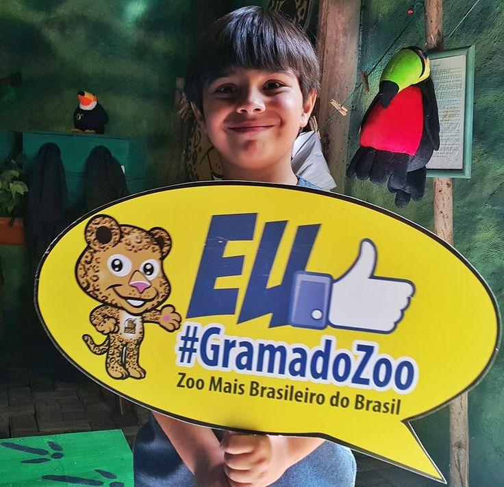 Felipe, o pequeno viajante: Gramado Zoo e Parque Gaúcho - 1 passaporte, 2 atrações super legais na Serra Gaúcha