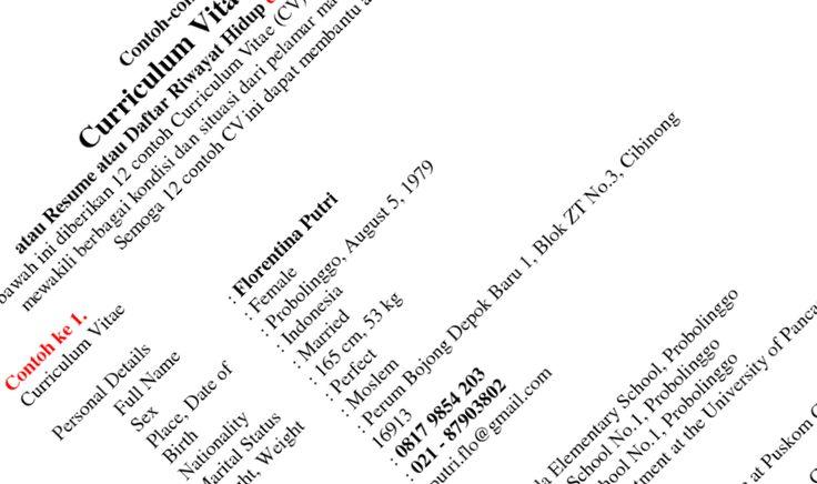 Contoh Daftar Riwayat Hidup Doc ( | Riwayat hidup, Hidup ...