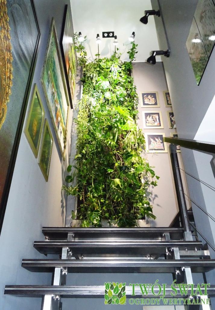 Ogród na schodach.