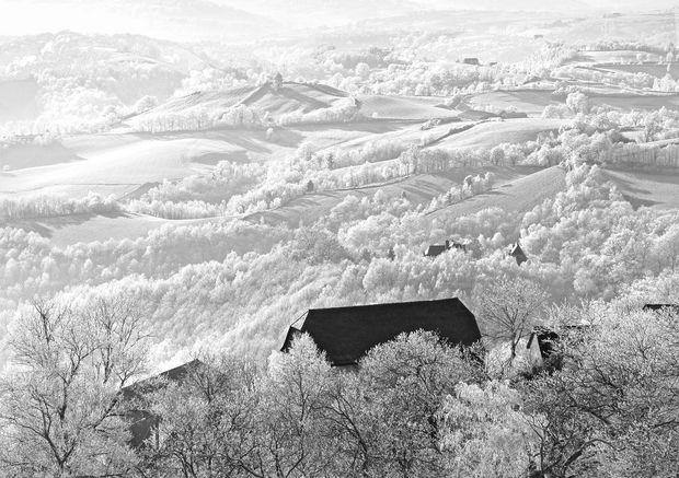 """L'hiver à Noailhac (Corrèze) - 1er prix de l'édition """"La nature en hiver"""" L'avis du jury :""""Le choix de traiter cette image en N&B est assez audacieux. Quand on voit cette image, nous sommes intrigués puis séduits. Le spectateur passe d'une impression d'abstraction à un hyperréalisme percutant."""""""