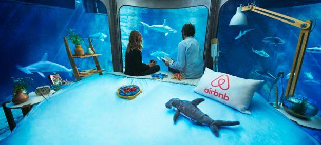E sim, é incrível.   Este Airbnb fica dentro de um tanque com tubarões
