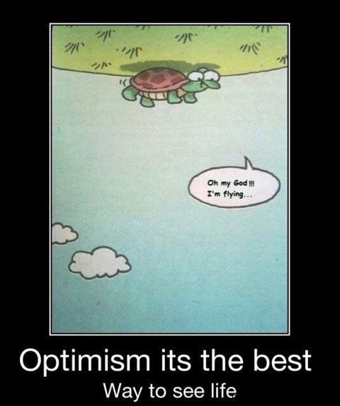 Optimistic turtle can fly!